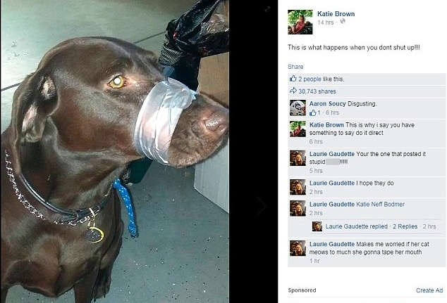 Facebook post of duct tape muzzle