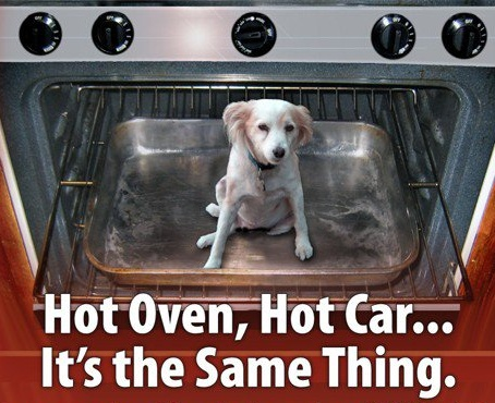 A Hot car is like an oven