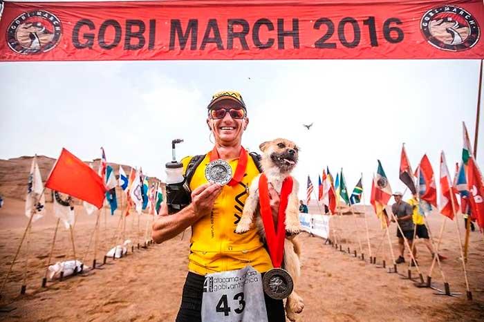 Gobi Dog