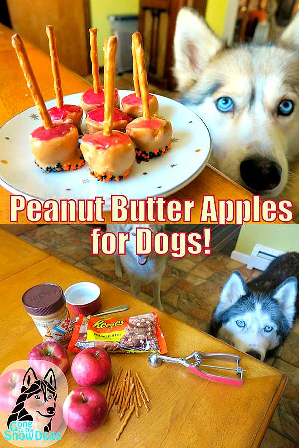 Treat Peanut Butter Apples for Dogs 5