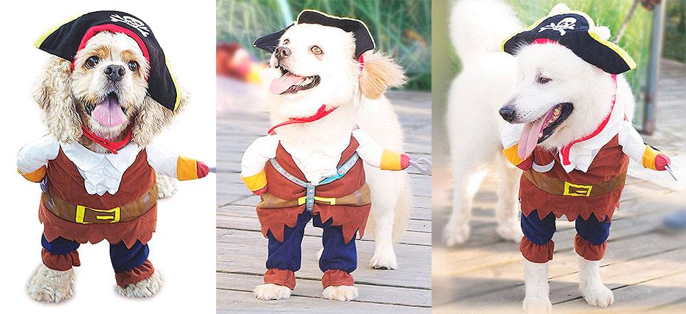 Dog costume Nacoco