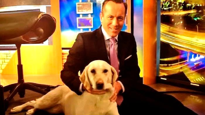 News anchor dog dies
