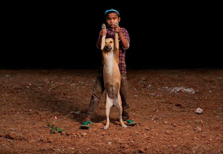 Dog and orphan 2