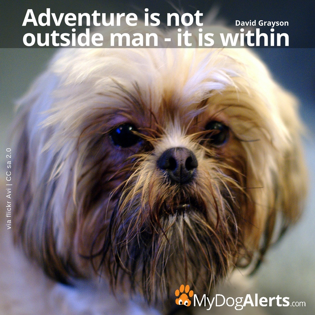 Adventure is not outside but within