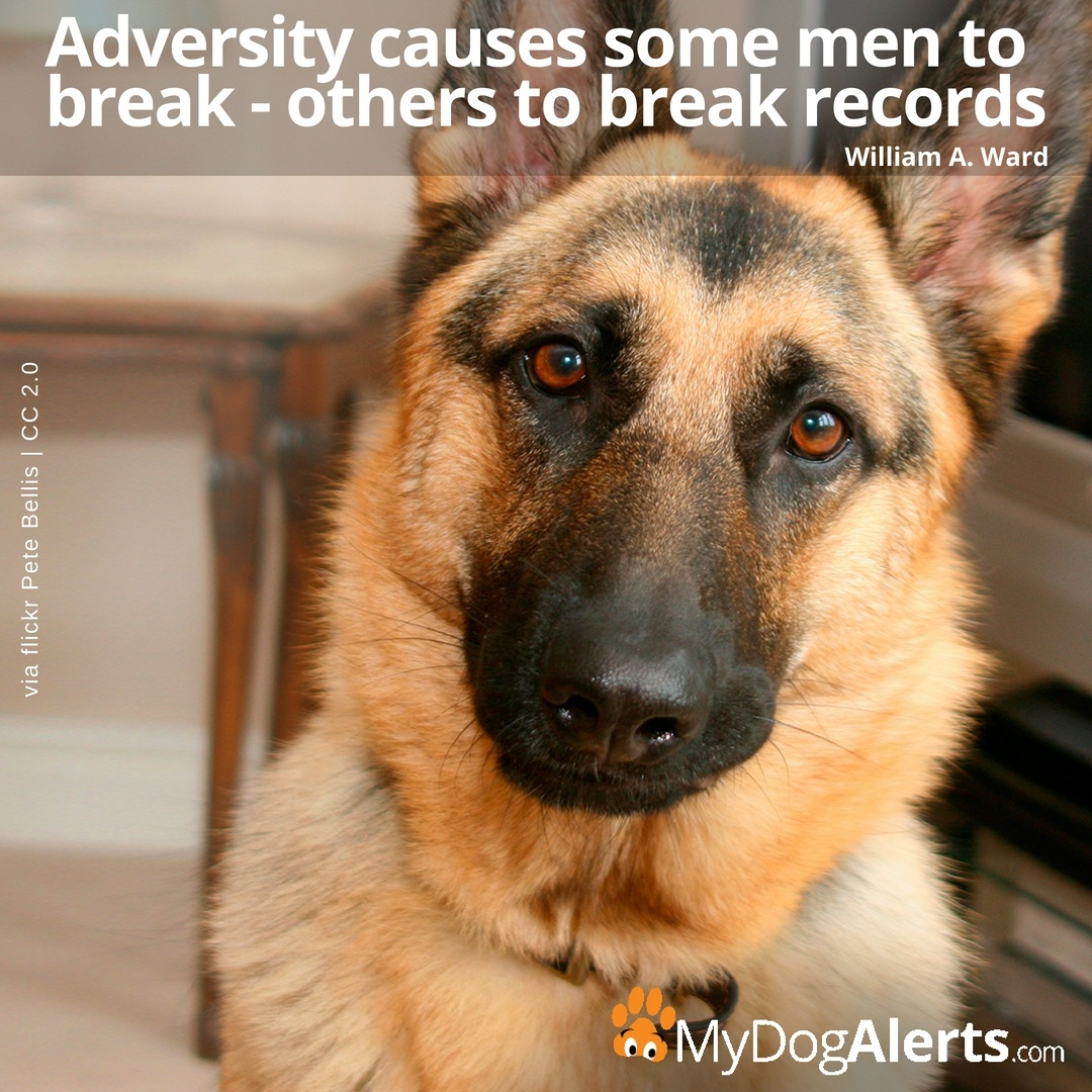 Adversity causes some men to break