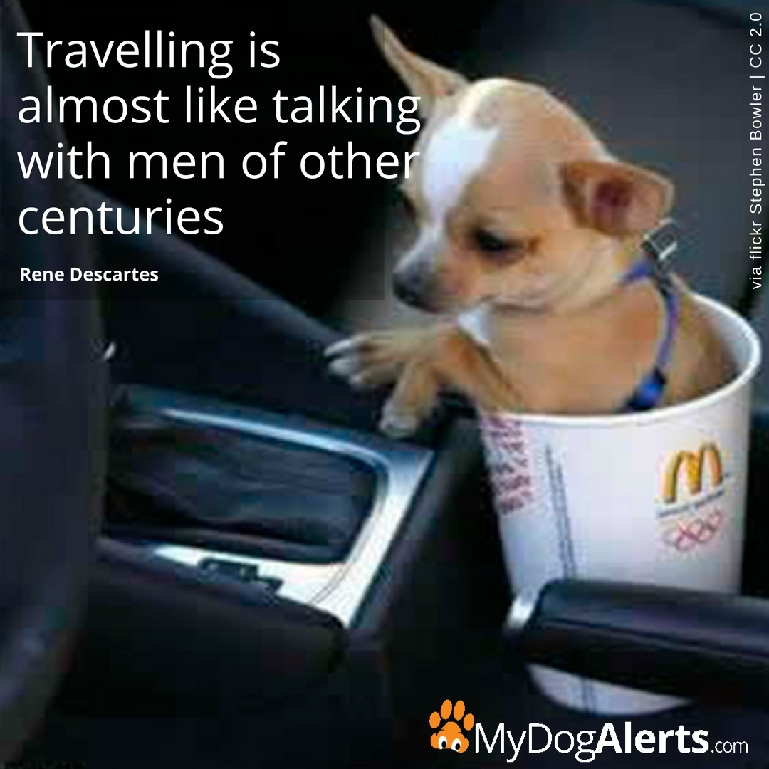 Travelling is almost like talking with men of other centuries