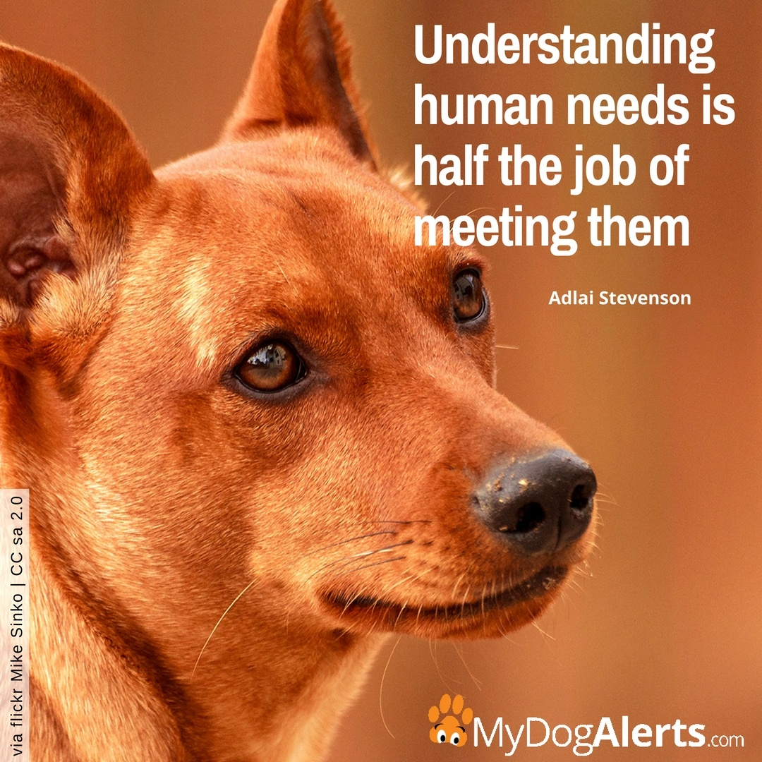Understanding human needs is half the job of meeting them